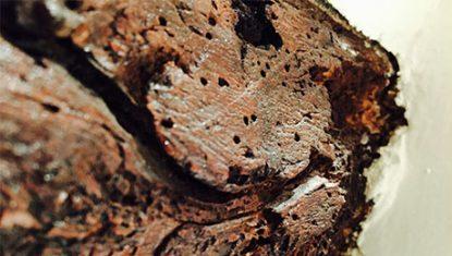 woodoworm-icon